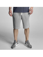 Bench Shorts Overdye grau