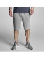 Bench Shorts Overdye gris