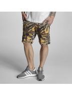Bench Shorts Aop Palm noir