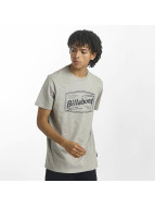 Billabong T-Shirty Labrea szary