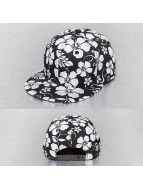 Cap Crony Snapback Caps Floral musta