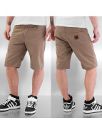 Carhartt WIP Shorts Questa Straight Fit Davies braun