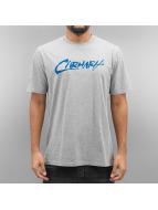 Carhartt WIP T-Shirt S/S Paint grau