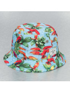 Cayler & Sons Hut Paradise Bucket bunt