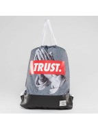 Cayler & Sons Pouch Trust grey