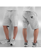 Cayler & Sons Shorts White Label Paris Beach grau