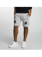Cayler & Sons Shorts FD grau