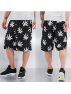 Cayler & Sons Shorts Big Budz nero