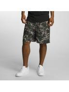 Cayler & Sons Shorts La Familia variopinto