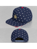Cayler & Sons Snapback Green Label Lil Budz bleu