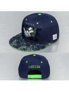 Cayler & Sons Snapback Cap Super Haze blau