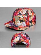 Cayler & Sons Snapback Cap GLD Label Dehner bunt