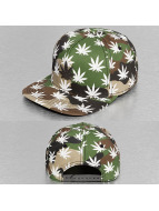 Cayler & Sons Snapback Cap Green Label Best Budz camouflage