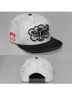 Cayler & Sons Snapback Cap White Label Tagged Up grau