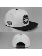 Cayler & Sons Snapback Cap Green Label Defend Your Crops grau