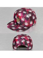 Cayler & Sons snapback cap Green Label Best Budz rood