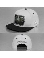 Cayler & Sons Snapback Capler Green Label Own Supply gri