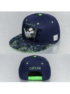 Cayler & Sons Snapback Caps Super Haze blå