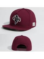 Cayler & Sons Snapback Caps WL Make It czerwony