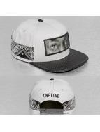 Cayler & Sons Snapback Caps White Label Eyes On Me grå