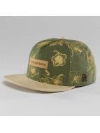 Cayler & Sons Snapback Caps Vibin vihreä