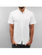 Cazzy Clang Kauluspaidat Short Sleeves II valkoinen
