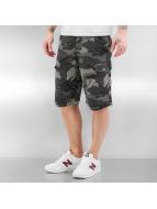 Cordon Chaz Cargo Shorts Camo Grey