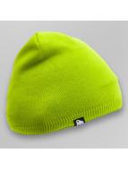 Dangerous DNGRS Beanie Plain Colour verde