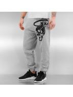 Dangerous DNGRS Pantalone ginnico Skullfire grigio