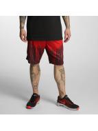 Dangerous DNGRS Shorts Rainy rosso