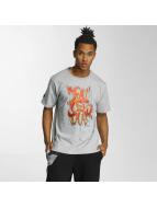 Dangerous DNGRS T-Shirt Moik Style grau