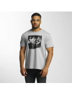 Dangerous DNGRS T-Shirt From The Streets Throw Up gray