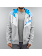 Dangerous DNGRS Zip Hoodie Egzon Race City grau