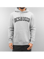 DC Sweat à capuche Ellis gris