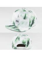 DEDICATED Snapback Caps Bright Leaves hvit