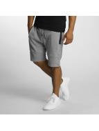 DEF Shorts Sight grigio