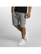 DEF Shorts Sight gris
