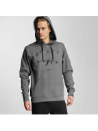 Defend Paris Hoodie Lille gray