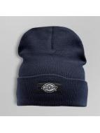 Dickies шляпа Yonkers синий