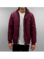 Dickies Cornwell Winter Jacket Maroon