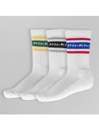 Dickies Chaussettes Madison Heights multicolore