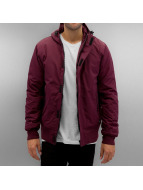 Dickies Giacca invernale Cornwell rosso