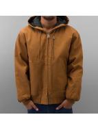 Dickies Manteau hiver Rigid Duck Hooded brun