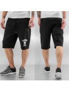Salton City Shorts Black...
