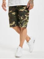 Dickies Short New York camouflage