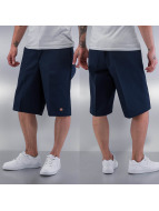 Dickies Shorts 13