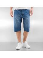 Dickies Shorts Pensacola bleu