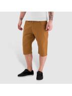 Dickies Shorts Alamo brun