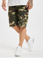 Dickies Shorts New York camouflage