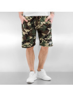 Dickies Shorts Maysville camouflage
